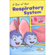 Tour of Your Respiratory System
