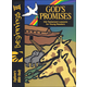 Beginnings II: God's Promises Student