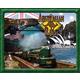 Australian Rails Transportation Game