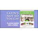 Latin's Not So Tough Flashcards on a Ring Level 2