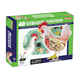 4D Vision Chicken Anatomy Model