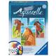 Aquarelle Midi - Horses Kit