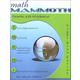 Math Mammoth Light Blue Series Grade 2-B Worktext (Colored Version)