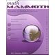 Math Mammoth Light Blue Series Grade 3 Answer Key (Colored Version)