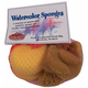 Natural Sea Sponges Craft Sack - 6 Sponges, Assorted