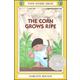 Corn Grows Ripe