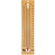 Student Thermometer