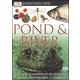 Eyewitness: Pond & River DVD