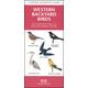 Western Backyard Birds Guide