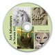 Art Adventures in Narnia 1 and 2 on CD
