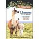 Llamas and the Andes (Magic Treehouse Fact Tracker)