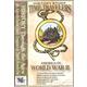 Time Travelers History Study CD: America in World War II