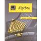 AGS Algebra I Workbook