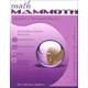 Math Mammoth Light Blue Series Grade 1 Answer Key