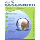 Math Mammoth Light Blue Series Grade 1-A Worktext