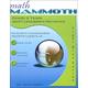 Math Mammoth Light Blue Series Grade 2 Tests & Reviews