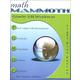 Math Mammoth Light Blue Series Grade 3-B Worktext