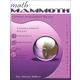 Math Mammoth Light Blue Series Grade 4 Answer Key