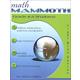 Math Mammoth Light Blue Series Grade 4-A Worktext