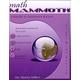 Math Mammoth Light Blue Series Grade 6 Answer Key