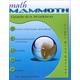 Math Mammoth Light Blue Series Grade 6-A Worktext