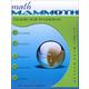 Math Mammoth Light Blue Series Grade 6-B Worktext