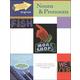 Nouns & Pronouns (SFES)
