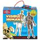 Human Body Jumbo Floor Puzzle