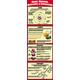 Atoms, Elements, Molecules, & Compounds Colossal Poster
