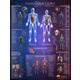 Human Anatomy Interactive Laminated Wall Chart with Free App