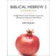 Biblical Hebrew 2 Workbook