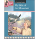 My Side of the Mountain Literature Teaching Guide