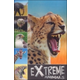 Extreme Animals (Ready To Read)