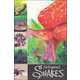 Slithering Snakes (Ready To Read)