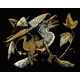 Engraving Art - Baby Dragon (Gold Foil)