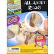 All About Rocks Mini-Lab