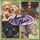 Treasury of Animals and Nature (Vol II)