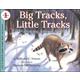 Big Tracks, Little Tracks (LRAFOS L1)
