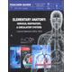 Elementary Anatomy: Nervous, Respiratory, & Circulatory Systems Teacher Guide (God's Wondrous Machine)