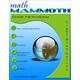 Math Mammoth Light Blue Series Grade 7-B Worktext