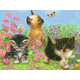 Colour Pencil By Numbers - Kittens