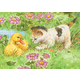 Mini Colour Pencil By Numbers - Kitten & Duckling