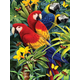 Painting By Numbers - Majestic Macaws (Junior Small)