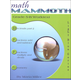Math Mammoth Light Blue Series Grade 5-B Worktext (Colored Version)