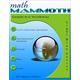 Math Mammoth Light Blue Series Grade 6-A Worktext (Colored Version)