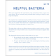 Helpful Bacteria Microslide Lesson Set