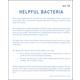Helpful Bacteria Microslide Lesson Set