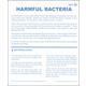 Harmful Bacteria Microslide Lesson Set