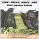 Eeny, Meeny, Miney, Moe Four Alaskan Ravens