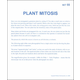 Plant Mitosis Microslide Lesson Set